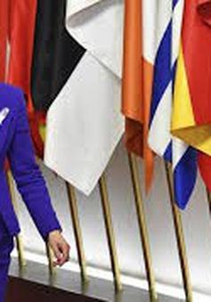 Hội nghị Thượng đỉnh EU thảo luận về các vấn đề nóng
