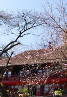 Ngày 26/3, nắng đẹp trải khắp khu vực Trung Bộ