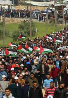 Bạo lực ở Dải Gaza, ít nhất 12 người thiệt mạng, khoảng 1.000 người bị thương