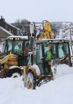 Bão tuyết gây thiệt hại nặng nề cho nền kinh tế Anh