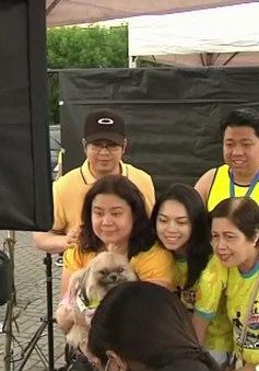 Độc đáo cuộc đua chó tại Philippines