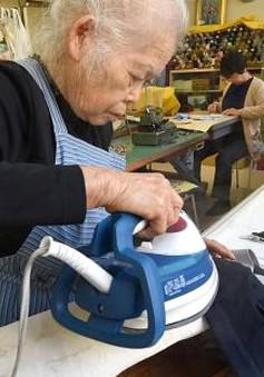 Nhật Bản: 48% doanh nghiệp không có kế hoạch cho đội ngũ kế cận
