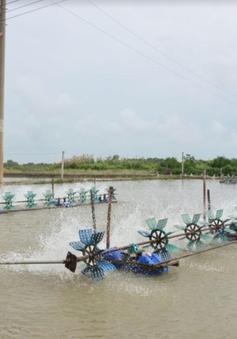 Kiên Giang sẽ xây dựng khu công nghệ cao phát triển ngành tôm