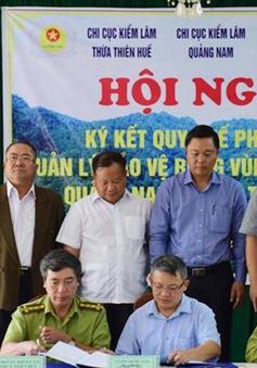 Thừa Thiên - Huế và Quảng Nam phối hợp quản lý bảo vệ rừng vùng giáp ranh