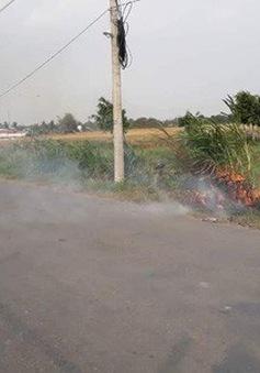 Tăng cường giải pháp ngăn ngừa tình trạng đốt đồng ven đường cao tốc