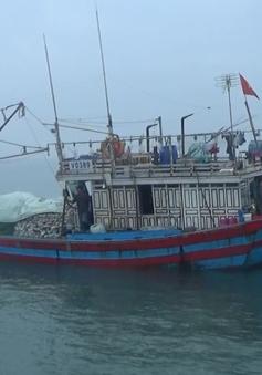 BĐBP Quảng Bình phối hợp cứu nạn tàu cá cùng 9 thuyền viên