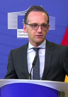 Đức kêu gọi giải pháp chính trị cho Syria