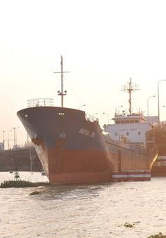 Tàu hàng trọng tải lớn trôi và đâm vào cầu Đồng Nai