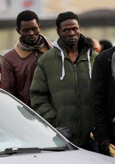 Israel trả tự do cho hơn 200 người nhập cư châu Phi