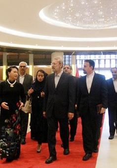 Chủ tịch Quốc hội Nguyễn Thị Kim Ngân hội đàm với Chủ tịch Quốc hội Iran