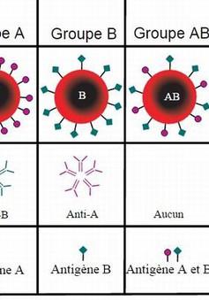 Hé lộ nguy cơ mắc bệnh từ chính nhóm máu của bạn