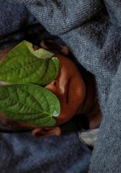 Chùm ảnh đạt giải Pulitzer 2018: Ám ảnh và đẫm nước mắt