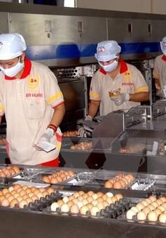 Bộ Công Thương: 11 năm qua chưa có DN nào nhập khẩu trứng gia cầm