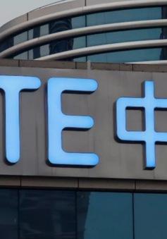 Hãng điện tử viễn thông ZTE có CEO mới