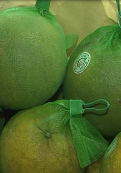 Khai mạc phiên chợ thực phẩm an toàn tại Nha Trang