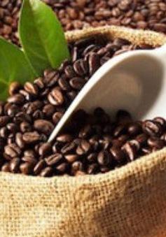 Giải pháp giữ vững thương hiệu cà phê Việt sau vụ cà phê trộn bột pin?