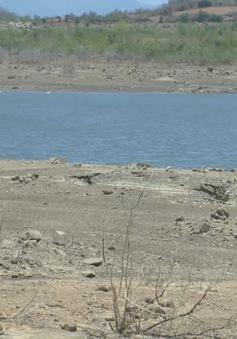 Cấp bách thi công hệ thống thủy lợi Tân Mỹ đưa nước về vùng hạn Ninh Thuận