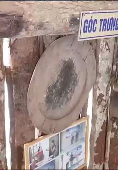 Sáng tạo trong dạy môn lịch sử ở huyện vùng cao Quảng Trị