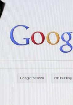 """Nam Em - Trường Giang """"sốt sình sịch"""" trên Google tuần qua"""
