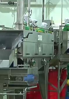 Khánh thành tổ hợp chế biến hoa quả xuất khẩu lớn nhất Nam Bộ