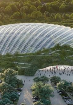 Tropicalia - Nhà kính lớn nhất thế giới