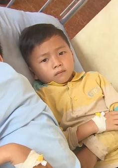 Công bố nguyên nhân vụ ngộ độc tập thể tại Sơn La