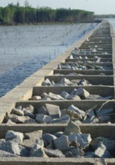 Gia tăng mức độ sạt lở đê biển Tây, Cà Mau