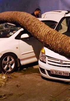 Số người thiệt mạng do mưa bão ở Ấn Độ đã tăng lên hơn 70 người