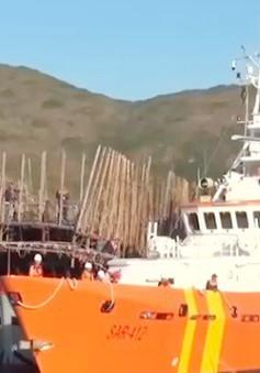 Bình Định: Cứu nạn thành công 49 thuyền viên