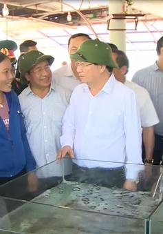 Phó Thủ tướng Trịnh Đình Dũng kiểm tra công tác bồi thường thiệt hại, hỗ trợ ngư dân Hà Tĩnh