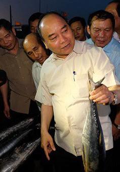 Thủ tướng chủ trì cuộc họp về giải pháp ổn định đời sống, sản xuất 4 tỉnh miền Trung