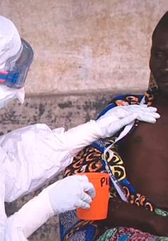 Báo động tái bùng phát Ebola ở châu Phi