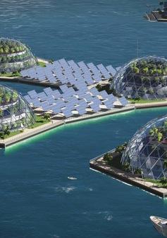 """Dự án """"Hòn đảo nổi"""" ở Thái Bình Dương"""