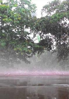 Thanh Hóa: Giông lốc liên tiếp gây thiệt hại lớn