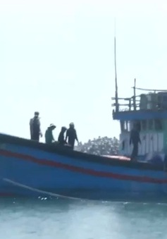 Quảng Ngãi: 3 ngư dân tử vong trên biển vì vật thể lạ phát nổ