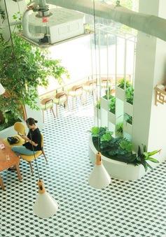Trực tiếp Thế hệ số 10h00 (24/5): Quán cà phê nào sẽ là lựa chọn lý tưởng cho mùa hè này?