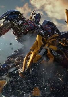 Transformers 6 bị xóa lịch chiếu trong năm 2019