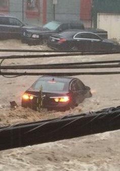 Lũ bùn nhấn chìm một thành phố ở Mỹ