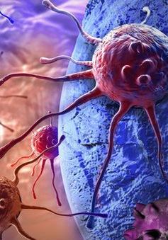 """Đã có cách tiêu diệt các tế bào ung thư """"bất tử"""""""