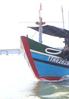 Tái tạo nguồn lợi thủy sản trên biển vùng ven biển Thừa Thiên Huế