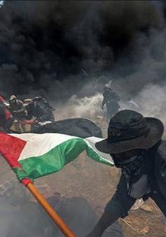 Liên Hợp Quốc dự kiến nhóm họp vì căng thẳng tại dải Gaza