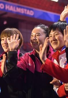 Đội bóng bàn Hàn Quốc - Triều Tiên hợp nhất, thi đấu chung