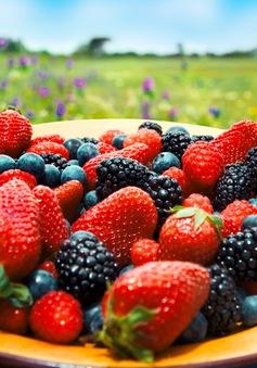 Các loại quả mọng có thể giúp ngăn ngừa ung thư