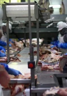 """Thịt lợn Mỹ """"gặp khó"""" khi vào thị trường Trung Quốc"""