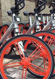 Dịch vụ chia sẻ xe đạp công cộng tại Mexico gặp phải khó khăn vì nạn trộm cắp