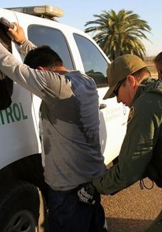 Mỹ bắt hơn 50.000 người nhập cư trái phép trong tháng 5