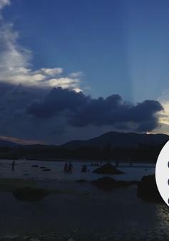 """Chuyện biển chuyện người """"Giữ rừng ở biển"""" (19h30 thứ Ba, 12/6) trên VTV8."""