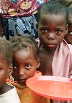 Khủng hoảng lương thực trầm trọng ở khu vực Sahel