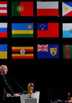 Bắc Mỹ sẽ đăng cai World Cup 2026