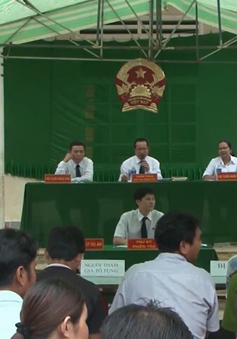 Tuyên án vụ hủy hoại rừng tại An Lão, Bình Định